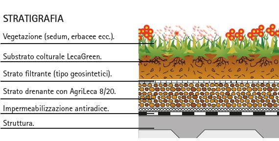 MC111-malpensa-stratigrafia-verdeMC111-malpensa-stratigrafia-verde